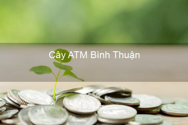 Cây ATM Bình Thuận