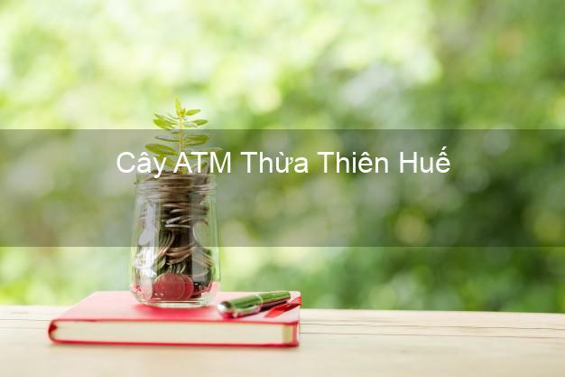 Cây ATM Thừa Thiên Huế